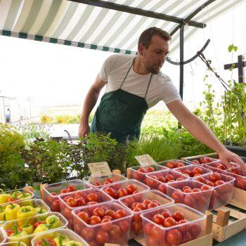 Aktionswoche gegen Lebensmittelverschwendung: Solidarische Landwirtschaft geht mit gutem Beispiel voran