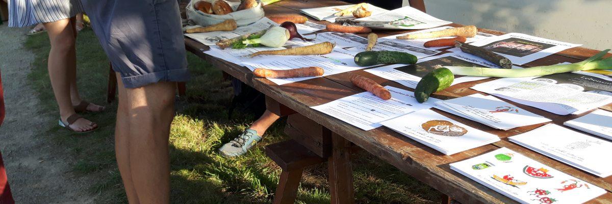 Infostand Foodsharing Potsdam Stadtteilfest Bornstedt